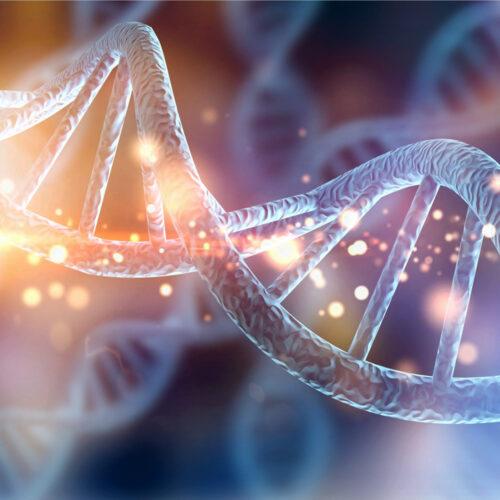KIR-HLAc genetic matching