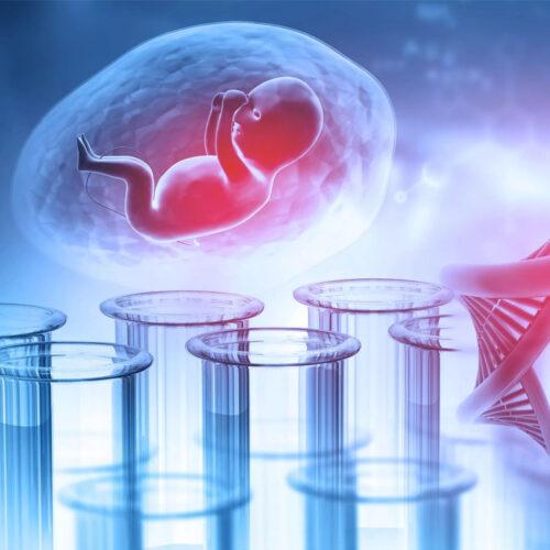 Υποβοηθούμενη εκκόλαψη εμβρύων (LAZT) και βλαστοκύστεων (LAH) Iolife