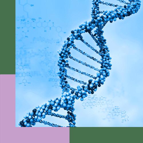Μη επεμβατικός προεμφυτευτικός γενετικός έλεγχος χρωμοσωμάτων (niPGT-A) iolife