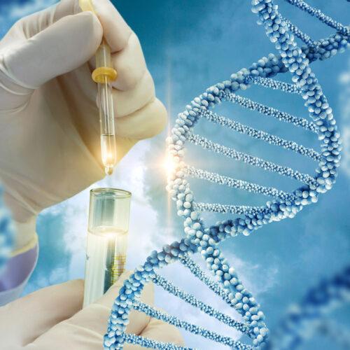 prohgmenoi genetikoi elegxoi