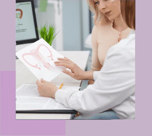 iolife.eu - Πρόκληση ωοθυλακιορρηξίας - Γιατρός δείχνει διάγραμα γυναικίου αναπαραγωγικού συστήματος