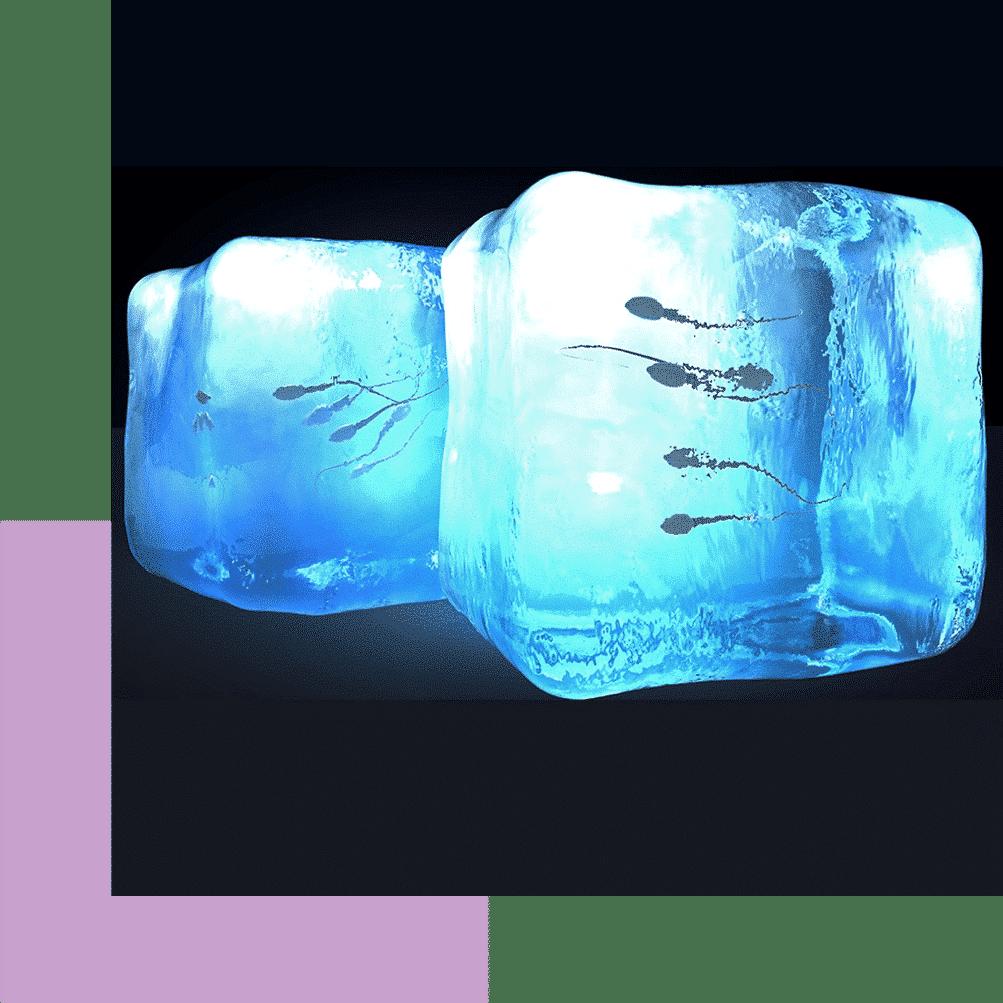 iolife.eu - Κρυοσυντήρηση Σπέρματος - sperm-Freezing