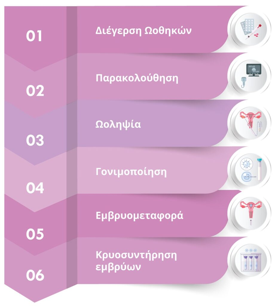 Διαδικασία- Τα 6 Στάδια εξωσωματικής Institute of Life infographic